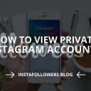 How to View Private Instagram Accounts (Updated – 2019)