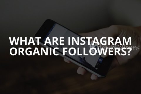 What Are Instagram Organic Followers? (Updated – 2020)