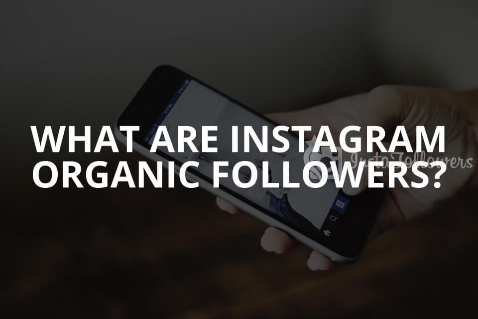 What Are Instagram Organic Followers? (Updated – 2019)