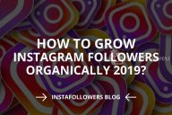 How to Grow Organically on Instagram: 8 Tips