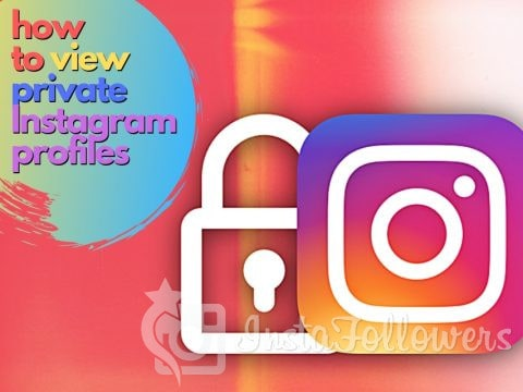 How to View Private Instagram Profiles: 2 Working Steps