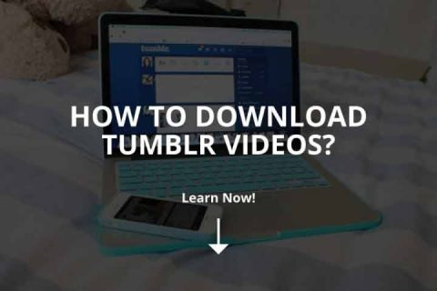 How to Download Tumblr Videos? (2020)