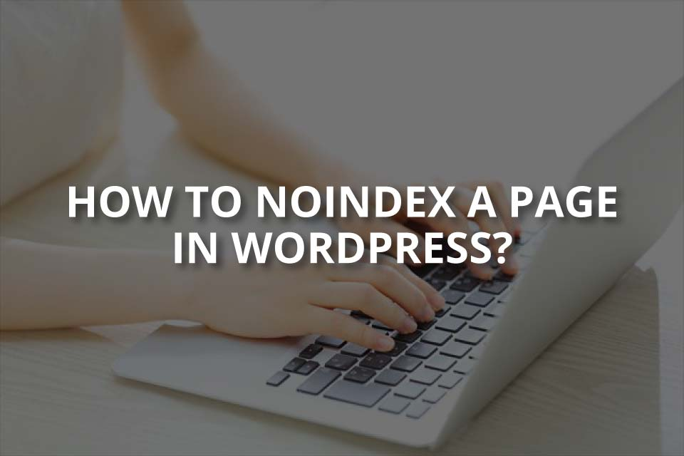 How to Noindex a Page in WordPress?