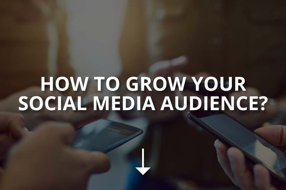 How to Grow Your Social Media Audience?
