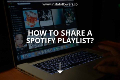 How to Share a Spotify Playlist (Brief Guide)