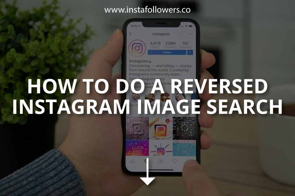 How to Do a Reversed Instagram Image Search