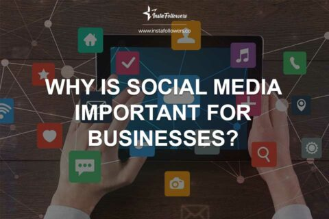 Why Is Social Media Important for Businesses?