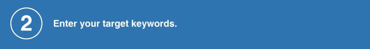 enter your target keywords
