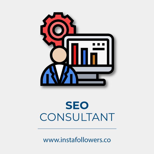 professional SEO consultant